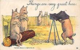cam100529 - Camera Vintage Postcard