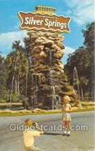 cam100545 - Camera Vintage Postcard