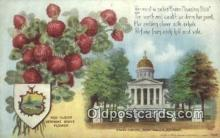 cap001945 - Montpelier, Vermont, VT State Capital, Capitals Postcard Post Card USA