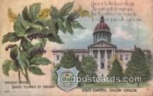 cap001951 - Salem, Oregon, OR  State Capital, Capitals Postcard Post Card USA