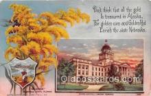 cap002500 - Goldenrod, State Capitol Lincoln, Nebraska, USA Postcard Post Card
