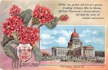 cap002515 - Trailing Arbutus, State Capitol Madison, Wisconsin, USA Postcard Post Card