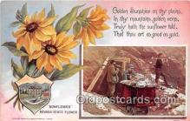 cap002520 - Sunflower Nevada, USA Postcard Post Card