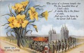 cap002528 - Sego Lily Utah, USA Postcard Post Card