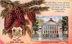 cap002531 - Pine Cone, State Capitol Augusta, ME, USA Postcard Post Card