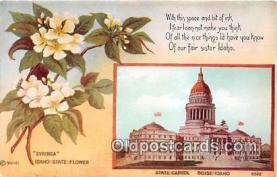 cap002539 - Syringa, State Capitol Boise, Idaho, USA Postcard Post Card