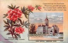 cap002543 - Rhododendron, State Capitol Hartford, Connecticut, USA Postcard Post Card