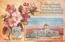cap002545 - Apple Blossom, State Capitol Little Rock, Arkansas, USA Postcard Post Card
