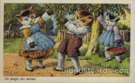 cat001114 - Cat, Cats, Postcard Post Card