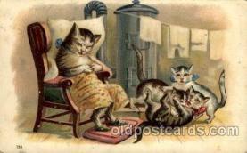 cat001115 - Cat, Cats, Postcard Post Card