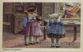 cat001116 - Cat, Cats, Postcard Post Card