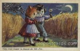 cat001117 - Cat, Cats, Postcard Post Card