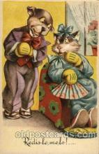 cat001126 - Cat, Cats, Postcard Post Card