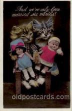cat001148 - Cat, Cats, Postcard Post Card