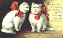 cat001235 - Cat, Cats Postcard Post Card