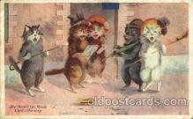 cat001261 - Cat, Cats Postcard Post Card