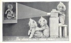 cat001302 - Cats watch movie Cat, Cats, Postcard Post Card