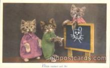 cat001307 - Cat, Cats, Postcard Post Card