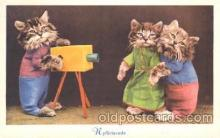 cat001310 - Cat, Cats, Postcard Post Card