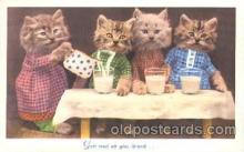 cat001311 - Cat, Cats, Postcard Post Card