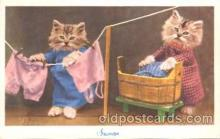 cat001312 - Cat, Cats, Postcard Post Card