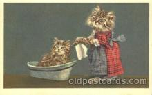 cat001314 - Cat, Cats, Postcard Post Card