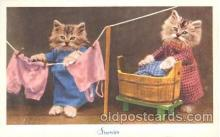 cat001317 - Cat, Cats, Postcard Post Card