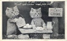 cat001526 - Cat Cats, Post Card, Post Card