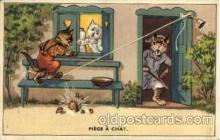 cat001601 - Cat Cats, Post Card, Post Card