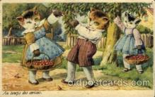 cat001608 - Cat Cats, Post Card, Post Card