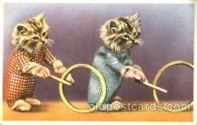 cat001628 - Cat Cats, Post Card, Post Card