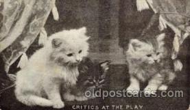 cat001635 - Cat Cats, Post Card, Post Card
