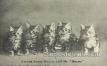 cat001645 - Cat Cats, Old Vintage Antique Postcard Post Card