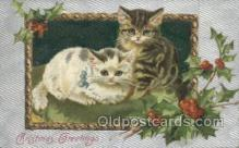 cat001661 - Cat Cats, Old Vintage Antique Postcard Post Card