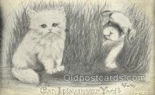 cat001663 - Cat Cats, Old Vintage Antique Postcard Post Card