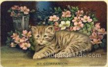 cat001684 - Cat Cats, Old Vintage Antique Postcard Post Card