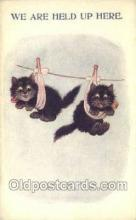 cat001695 - Cat Cats, Old Vintage Antique Postcard Post Card