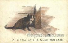 cat001707 - Cat Cats, Old Vintage Antique Postcard Post Card
