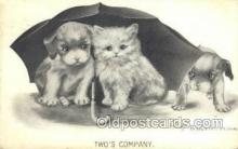 cat001710 - Artist Katherine Gassaway, Cat Cats, Old Vintage Antique Postcard Post Card