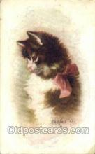 cat001718 - Artist Kenyon Cat Cats, Old Vintage Antique Postcard Post Card