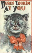 cat001724 - Cat Cats, Old Vintage Antique Postcard Post Card