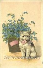 cat001728 - Cat Cats, Old Vintage Antique Postcard Post Card
