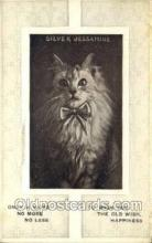 cat001732 - Cat Cats, Old Vintage Antique Postcard Post Card
