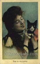 cat001733 - Cat Cats, Old Vintage Antique Postcard Post Card