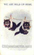 cat001747 - Cat Cats, Old Vintage Antique Postcard Post Card