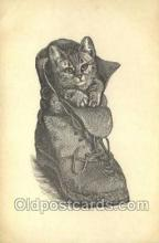 cat001752 - Cat Cats, Old Vintage Antique Postcard Post Card