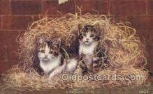 cat001766 - Cat Cats, Old Vintage Antique Postcard Post Card