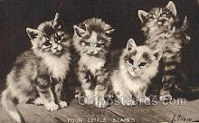 cat001767 - Cat Cats, Old Vintage Antique Postcard Post Card