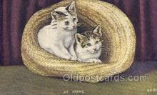 cat001775 - Cat Cats, Old Vintage Antique Postcard Post Card