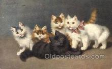 cat001781 - Artist Sperlich, Cat Cats, Old Vintage Antique Postcard Post Card